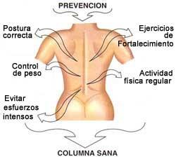 Los dolores en el vientre y los riñones la náusea